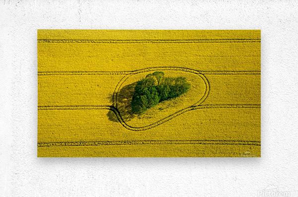 Island in the Field  Metal print