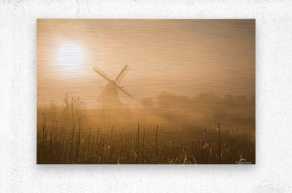 Golden Dawn.  Metal print