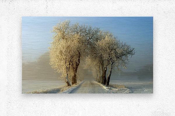 Winter  gateway  Metal print