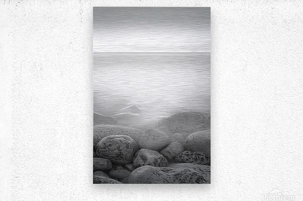 Moog Island  Metal print