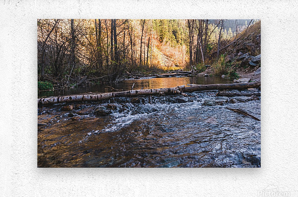 Log Block Creek  Metal print