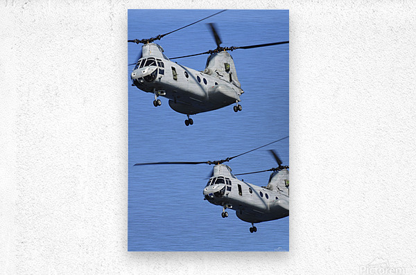 Two U.S. Marine Corps CH-46E Sea Knight helicopters in flight.  Metal print