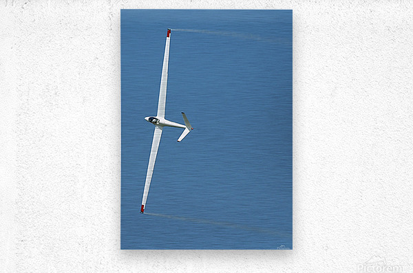 A sailplane glider during the 2007 Naval Air Station Oceana Air Show.  Metal print