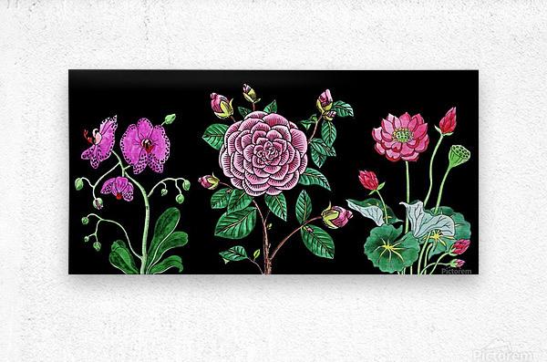 Camellia Orchid Lotus Flowers Watercolor On Black  Metal print