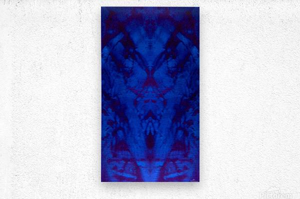 1541255326071~3_1541278523.74  Metal print