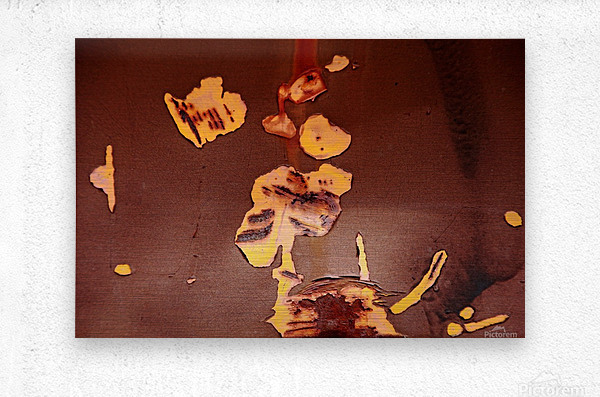 Watching Paint Peel  Metal print