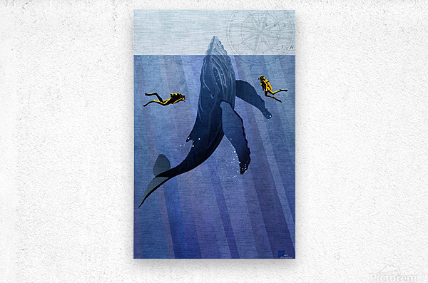Scuba Dive with Whale  Metal print