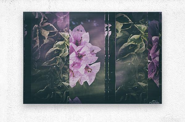 Bougainvillea Collage  Metal print