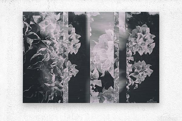 Bougainvillea Collage B&W  Metal print