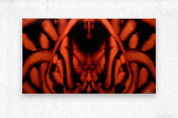 1542143674246_1542161562.62  Metal print