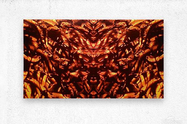 1542381772287_1542384424.21  Metal print