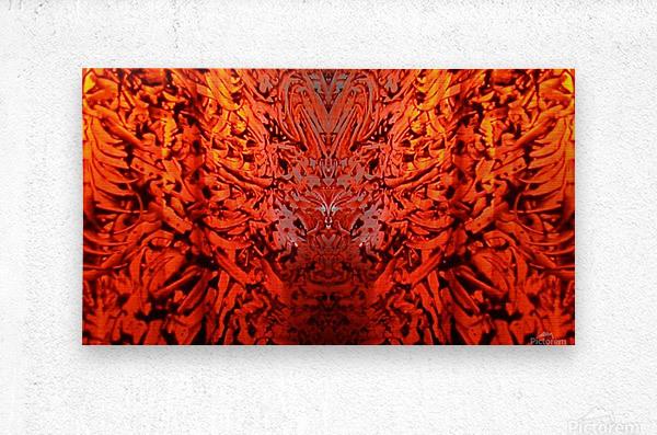 1542382046950_1542384658.5  Metal print