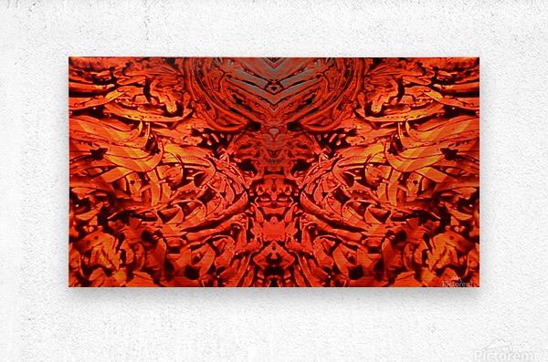 1542382712913_1542384677.53  Metal print