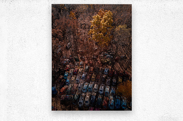 Abandoned Car Graveyard   Metal print