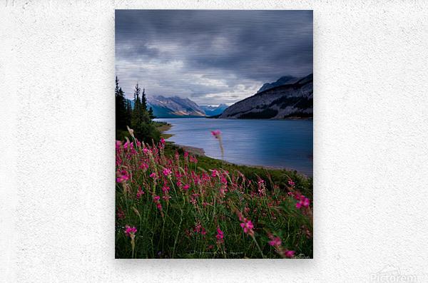 Spray lake   Metal print