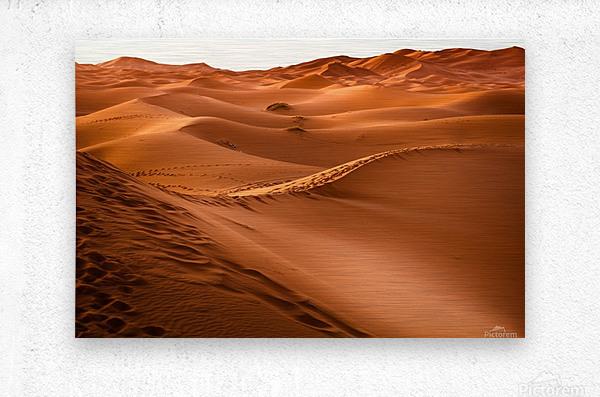Beautiful Nature Landscape Hot Sun Desert Sahara Sand Dune Dunes Hot Climate Photography landscape photo Scenery  Metal print