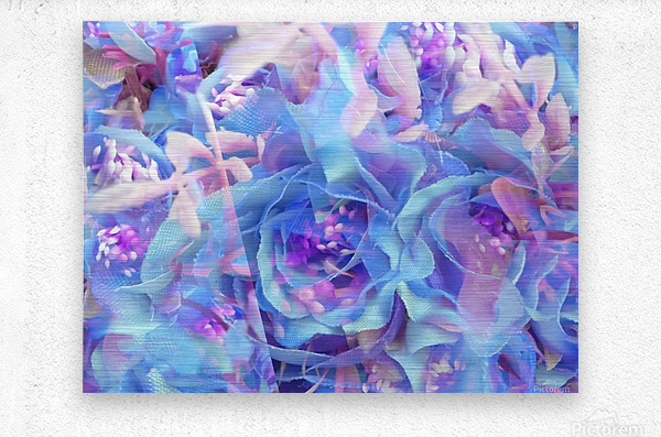 blooming blue rose texture abstract background  Metal print