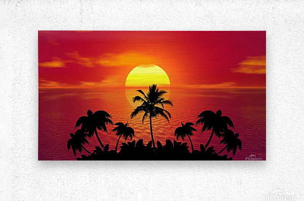 tropical sunset summer sun palm tree hot climate night  Metal print
