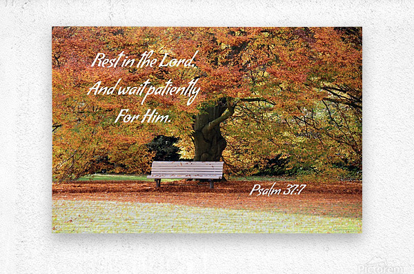 Rest in the Lord  Metal print