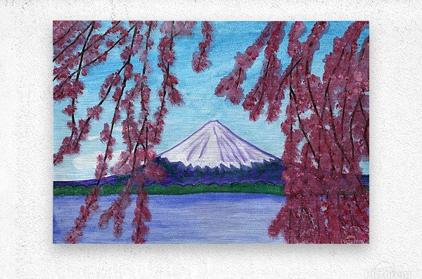 Sakura blooming on the background of a snowy mountain  Metal print
