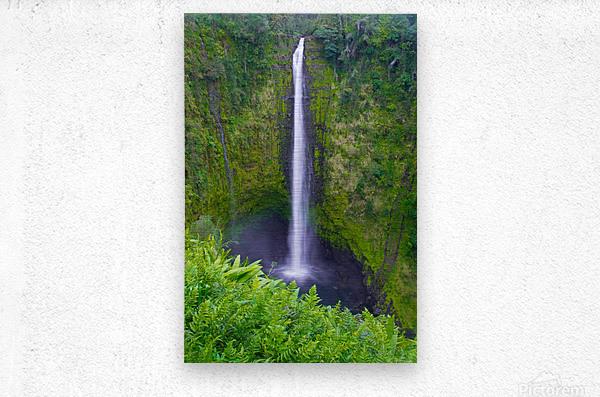Tropical Falls - Hawaii Vertical  Metal print