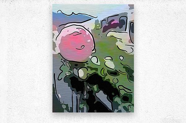 Pink Rose Garden on Braddock Drive  Metal print