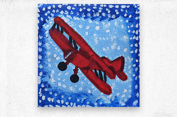 Airplane. David K  Metal print
