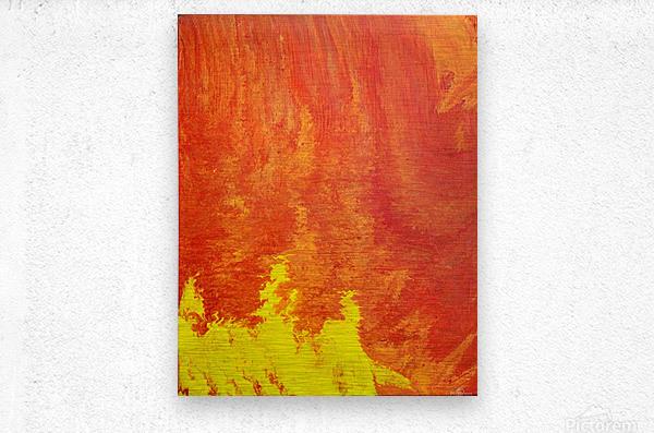 Fire in the Sky. Tala S  Metal print