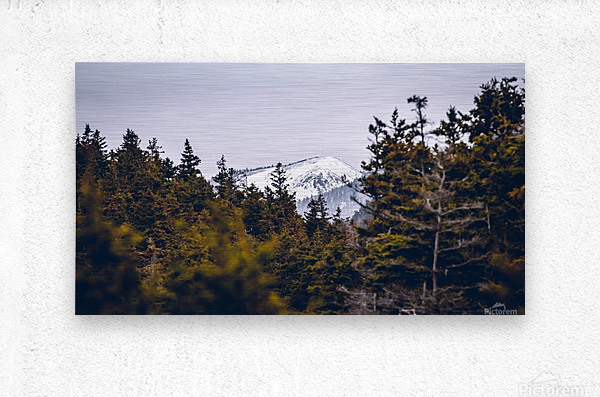 Cape Breton Highlands  Metal print