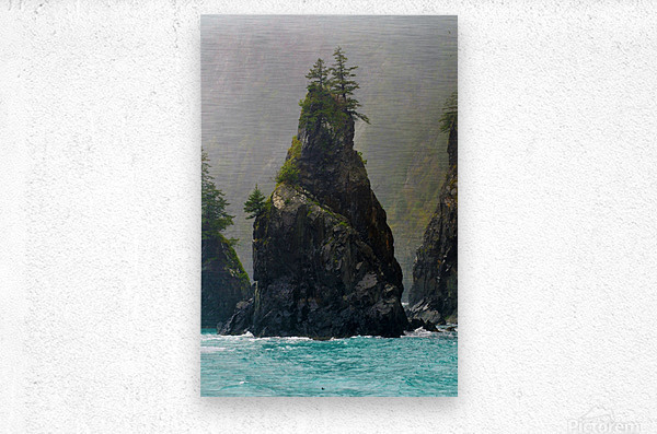 Sounds of Alaska  Metal print