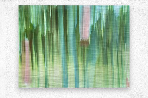 Moving Trees 04 Landscape 52-70  Metal print