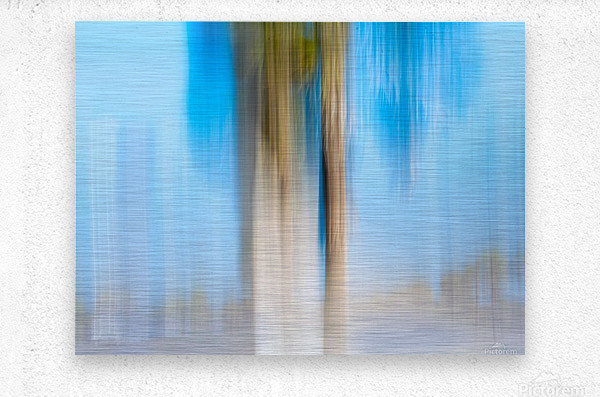 Moving Trees 13 Landscape 52 70 200px  Metal print