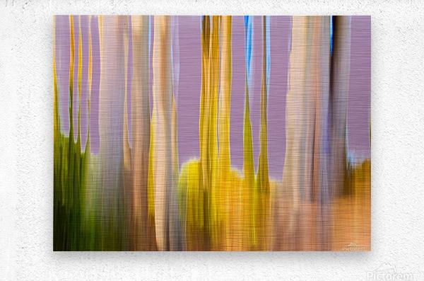Moving Trees 22 Landscape 52 70 200px  Metal print