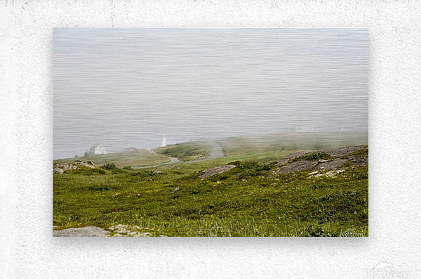 View from Cape Spear Walking trails 15  Metal print