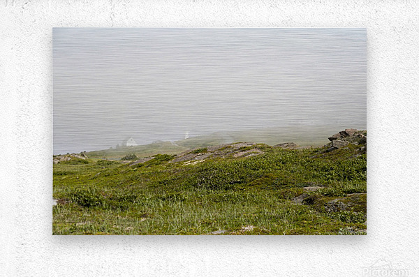 View from Cape Spear Walking trails  Metal print