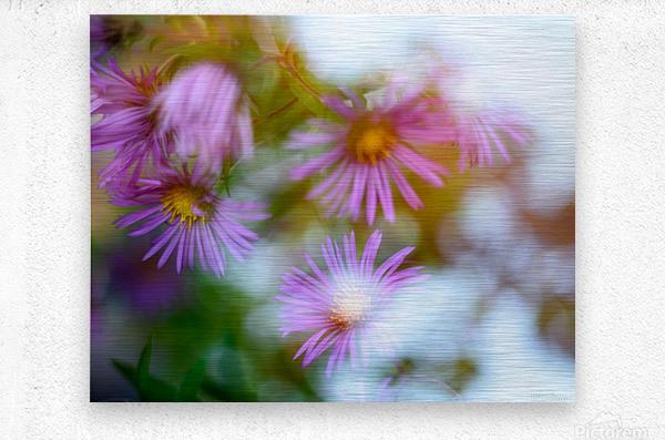 Fleur et ciel  Metal print