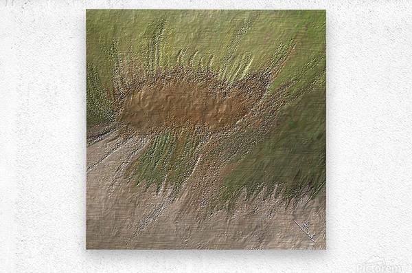 Acid etch  Metal print