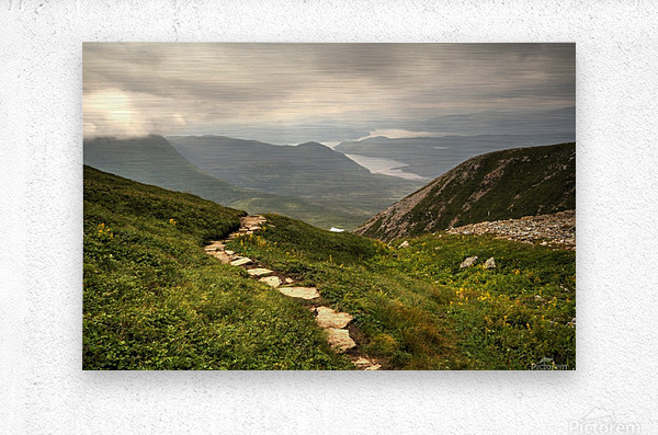 Grosmorne Mountain  Metal print