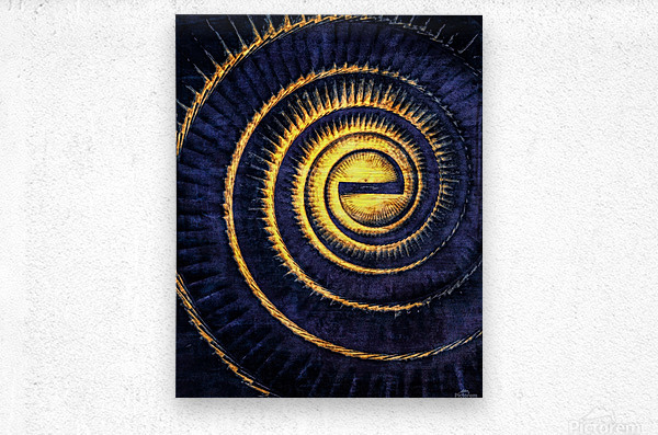 Reflections in a Golden Eye  Metal print