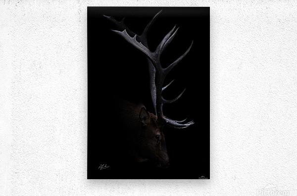 Elk in Black  Metal print
