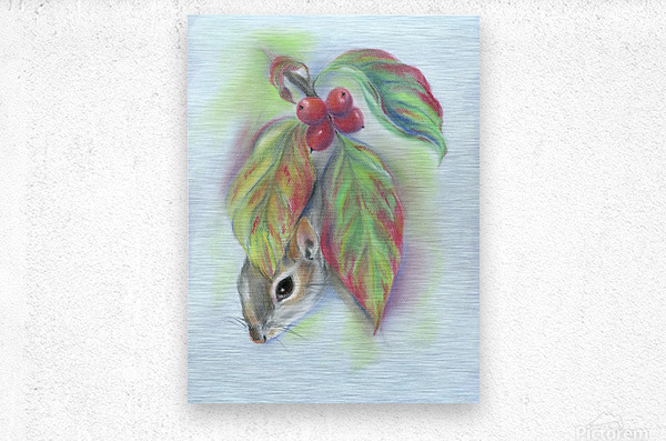 Squirrel in the Autumn Dogwood  Metal print