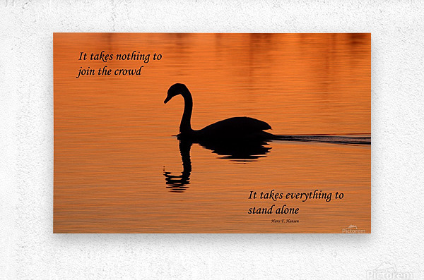 Stand Alone  Metal print