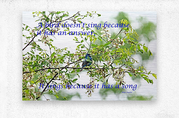 Because It Has A Song  Metal print