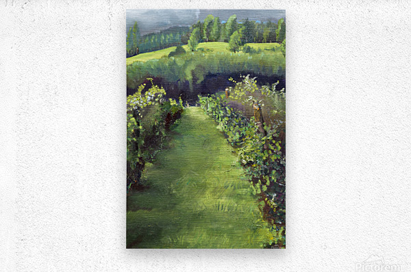 Trilogy of the Vines at Otts - Two of Three  Metal print