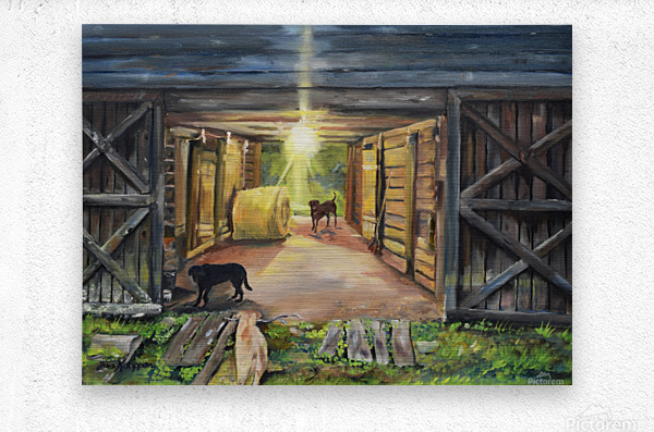 After Hours in Pas Barn LS  Metal print