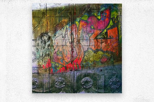 IMG_7888  Metal print