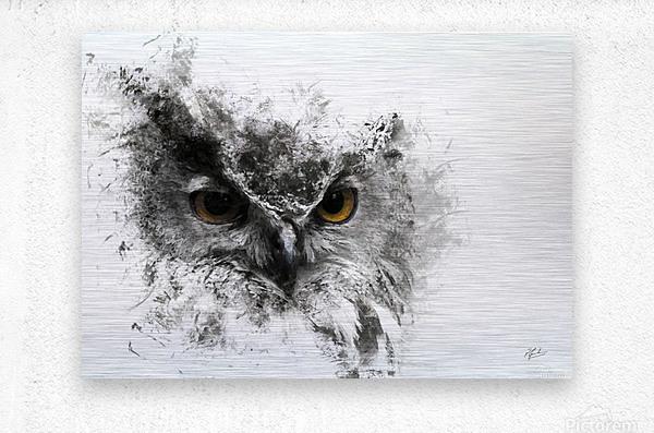 European Eagle Owl 01  Metal print