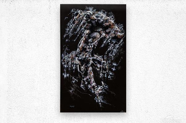 Hammer Head Shark Apparition   Metal print