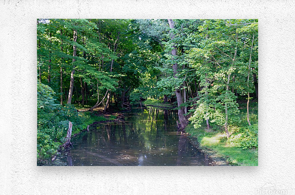 Holley Erie Canal Falls 3  Metal print