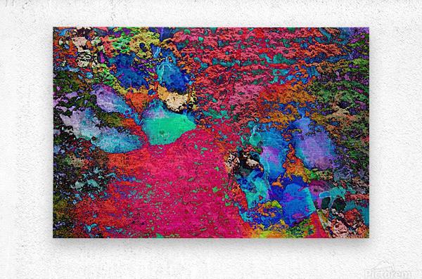Paw Prints Colour Explosion  Metal print